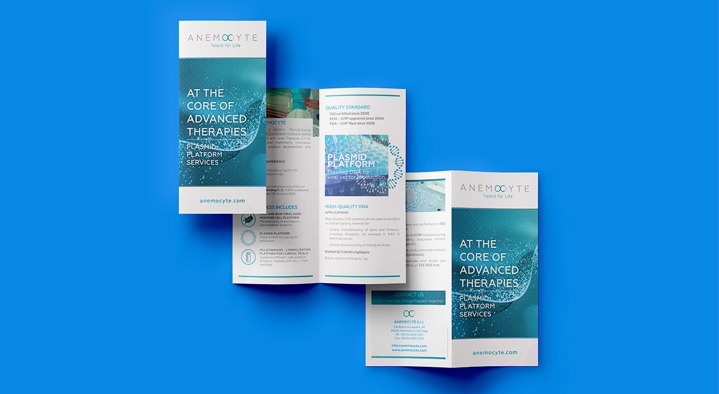 Anemocyte brochure