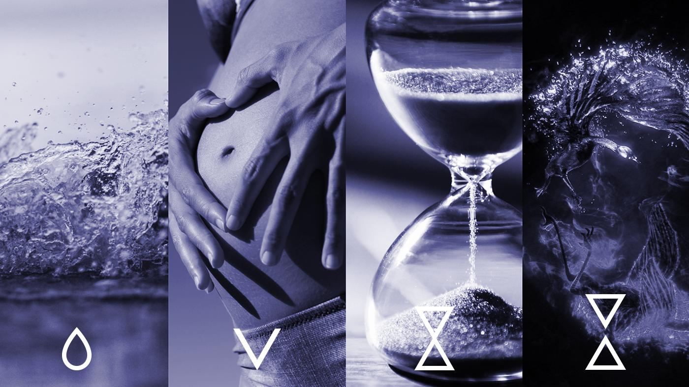 vitalunga concept branding
